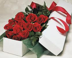 12 Red Roses in Paper Box