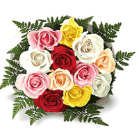 Twelve Mixed Roses Bunch