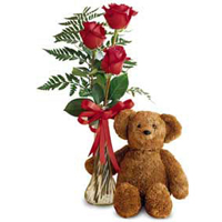 Three Red Roses with a Bear