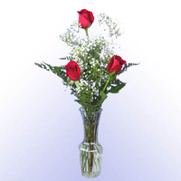 Three Red Roses in a Glass Vase