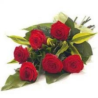 True Love-6 Red Roses