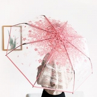 Romantic Transparent Umbrella
