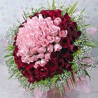 100 Pink & Red Roses