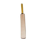 Cricket Sports Bat-small
