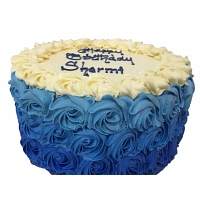Blue Shaded Cake
