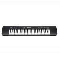 CASIO CTK-245 Key Board