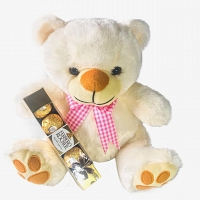 Cute Teddy with Choco