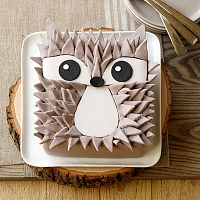 Edgy Hedgehog Cake