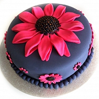 Pink Sunflower Cake