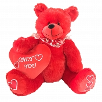 Only You Valentines Heart Teddy Bear