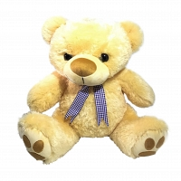 Creamy Teddy With Ribbon