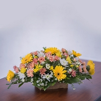 Jebra and Chrysanthemum Mixed Basket
