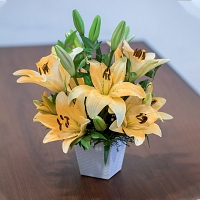 Mini Yellow Lily Basket