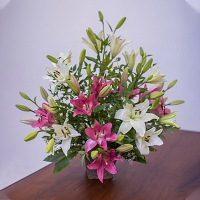 Mixed Color Lily Kithul Basket