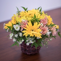 Mixed Yellow Jebra and Chrysanthemum Basket