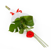 Single Red Roses Sheaf (1-nos)