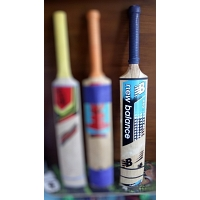 Cricket Soft Ball Bat