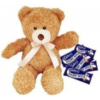 Teddy & cadbury chocolates