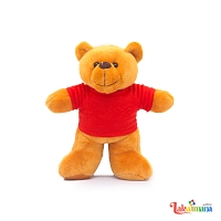 Standing Red Teddy