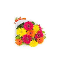 Mix Gerberas Flower Sheaf (15-nos)