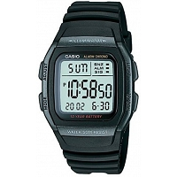 Casio D031 Youth Series Watch