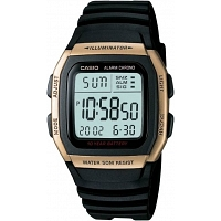Casio D034 Youth Series Watch