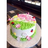 Lady Bug Birthday Cake 1.5kg