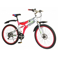 Mountain Bike(Large)