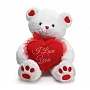 Valentine's Day Soft Toys